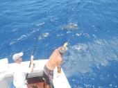 Buoy_Fishing_Silky